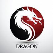 Постер Главный Вектор Дракон