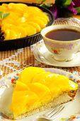foto of saucer magnolia  - Peach tart - JPG