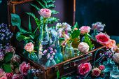 Flower Collection In Vintage Glass Jars, Vases, And Vials In A Suitcase. Botany And Perfume Concept  poster