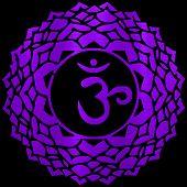 Sahasrara Chakra Energy Meditation Yoga Hindu Metallic Illustration poster