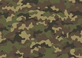 Camouflage Seamless Pattern. Trendy Style Camo, Repeat Print. Vector Illustration. Khaki Texture, Mi poster