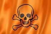 image of skull crossbones flag  - toxic poison skull flag three dimensional render satin texture - JPG