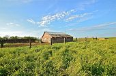 pic of feedlot  - Old Vintage house in nature countryside daytime summer - JPG