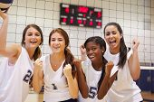 picture of volleyball  - Members Of Female High School Volleyball Team - JPG