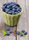 picture of honeysuckle  - Fresh Ripe Honeysuckle Berries in Green Wicker Basket isolated on Rustic Wooden background  - JPG