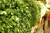 picture of greenery  - greenery on market as background - JPG