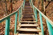stock photo of staircases  - Old wooden staircase in autumn forest no people - JPG