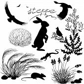 stock photo of fescue  - Set of silhouettes of steppe plants and animals - JPG