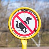 stock photo of dog poop  - A sign in a park for no poop with the icon of a dog pooping - JPG