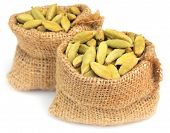 picture of cardamom  - Cardamom seed in sack over white background - JPG