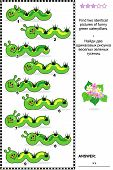 pic of green caterpillar  - Spring or summer visual puzzle - JPG
