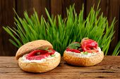 picture of scallion  - Sandwiches with gravlax parsley scallion capers and cream cheese on spring grass background horizontal - JPG
