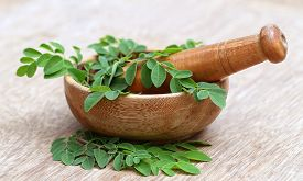 stock photo of malunggay  - Close up of Moringa leaves with mortar and pestle - JPG
