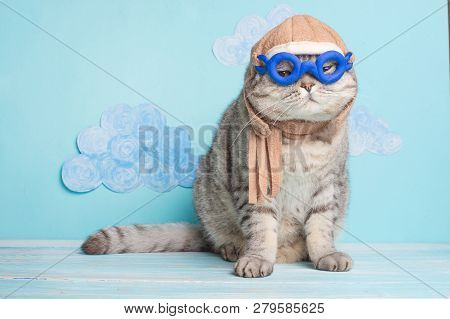 poster of Very Funny Cat Pilot Of An Airplane With Glasses And A Pilot's Hat, Against A Background Of Clouds.
