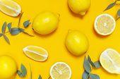 Ripe Juicy Lemons And Green Eucalyptus Twigs On Bright Yellow Background. Lemon Fruit, Citrus Minima poster
