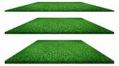Grass Texture Grass Background. Grass Isolated On White Background  For Golf Course, Soccer Field Or poster