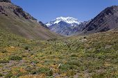 picture of aconcagua  - Aconcagua valley with the Aconcagua at the back Argentinian Andes - JPG