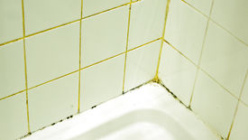 stock photo of grout  - mold and dirty grout in a shower - JPG