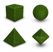 foto of octahedron  - Geometrical figures from grass - JPG