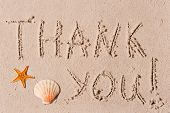 pic of beach shell art  - word of thank you to the wet sand or seashells - JPG