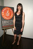 Saffron Burrows  at the 60th Anniversary of the Universal Declaration of Human Rights gala hosted by