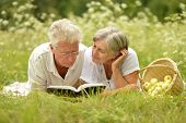 picture of older men  - Loving elderly couple having a picnic in the summer - JPG