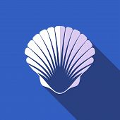 stock photo of oyster shell  - White scallop seashell on blue background flat design - JPG