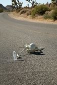 picture of h20  - A lost hiker dies of thirst on a deserted desert road inches away from a bottle of water - JPG