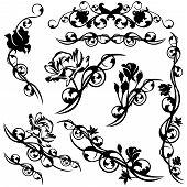 foto of rose bud  - set of roses floral calligraphic design elements  - JPG