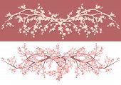 picture of sakura  - spring season asian style cherry blossom  - JPG