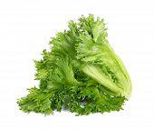 stock photo of iceberg lettuce  - Frillice Iceberg lettuce isolated on white background - JPG