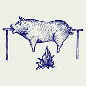 pic of spit-roast  - Roasted pig - JPG