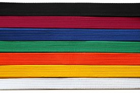 stock photo of karate-do  - Martial Art belts in seven colors background - JPG