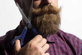 stock photo of long beard  - Closeup of unshaven man in violet checkered shirt with long beard and handlebar moustache holding scissors in hand standing isolated on white background horizontal picture - JPG