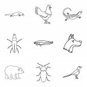 Mammal Icons Set. Outline Set Of 9 Mammal Icons For Web Isolated On White Background poster