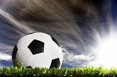 Постер, плакат: Футбольный мяч на футбольном поле