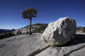 pic of errat  - Erratic boulders were formed by glacial activity in Yosemite National Park - JPG