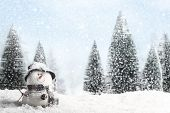 image of coniferous forest  - Christmas Card - JPG