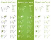 pic of flank steak  - Icon set for packaging and info  - JPG