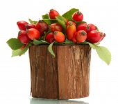 ripe hip roses with leaves in wooden vase, isolated on white