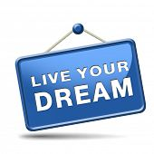 live your dream come true make dreams into reality realize your goals your life  house car vacation