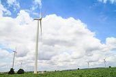 pic of cassava  - Wind turbine in cassava farm for generating electricity - JPG