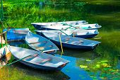 image of dock a pond  - rowing boats in the pond in the early morning - JPG