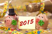 foto of talisman  - pig with cloverleaf as talisman for new year 2015 - JPG