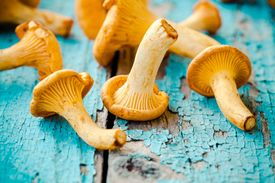 stock photo of crimini mushroom  - organic fresh chanterelle mushrooms on a wooden background - JPG