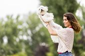 picture of maltese  - Young woman with a maltese dog in the park - JPG