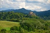 picture of pieniny  - Old castle in Poland  - JPG