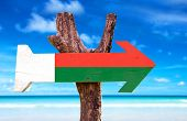 pic of dauphin  - Madagascar Flag wooden sign with beach background - JPG