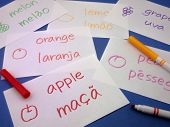 stock photo of card-making  - Making language flash cards for fundamental words - JPG