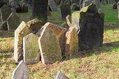 pic of headstones  - Headstones in the Jewish cemetery Prague Czech Republic - JPG